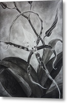 Upside-down Orchid Metal Print by Estephy Sabin Figueroa