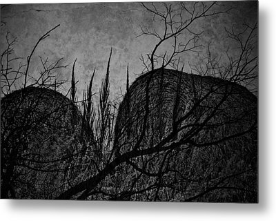 Valley Of Sticks Metal Print by Empty Wall