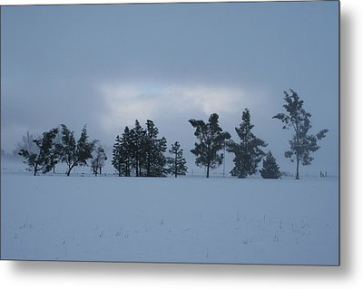 Metal Print featuring the photograph Valley Sentinels by Holly Ethan