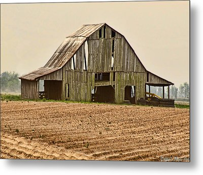 Metal Print featuring the photograph Vanishing American Icon by Debbie Portwood