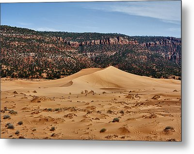 Vermilion Dunes Metal Print by Stephen Campbell