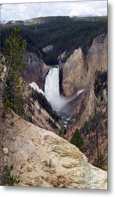 Vertical Lower Falls Of Yellowstone Metal Print by Living Color Photography Lorraine Lynch