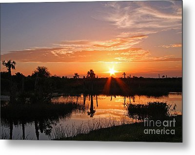 Viera Wetlands Sunset Metal Print by Jennifer Zelik