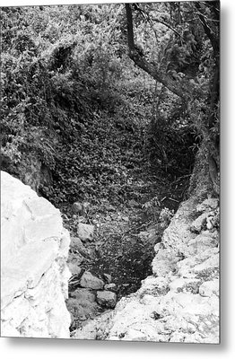 View From A Desert Walking Trail Metal Print