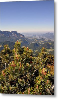 Metal Print featuring the photograph View From Eagles Nest by Rick Frost