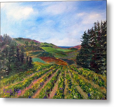 View From Soquel Vineyards Metal Print by Annette Dion McGowan