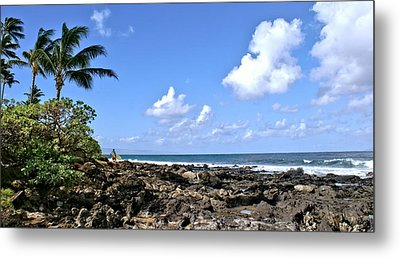 View From The Gazebo On Maui Metal Print by Rob Green