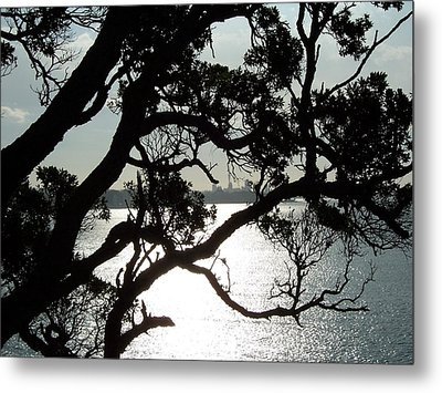 View Of Auckland Metal Print by Peter Mooyman