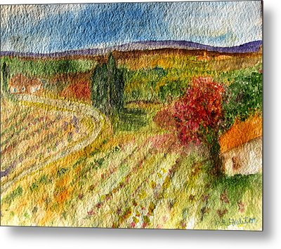 Vineyard In Provence Metal Print