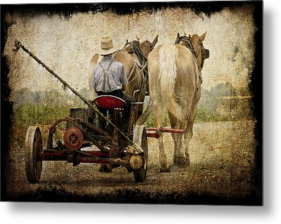 Vintage Amish Life D0064 Metal Print by Wes and Dotty Weber