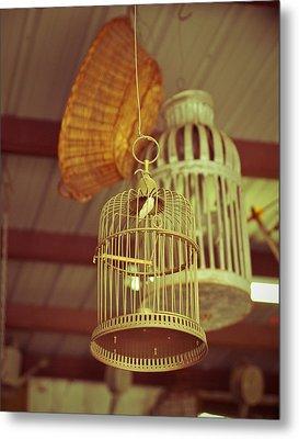 Vintage Birdcages Metal Print by Sonja Quintero