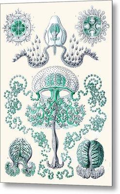 Vintage Jellyfish Metal Print by Patruschka Hetterschij