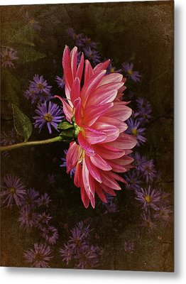 Vintage October Dahlia Metal Print by Richard Cummings
