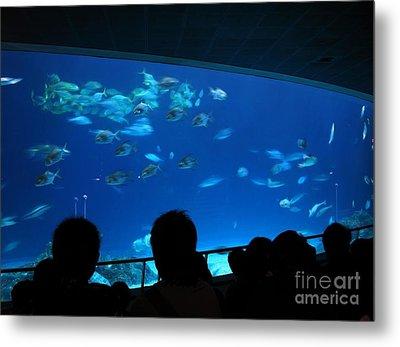 Visitors At Ocean Aquarium Metal Print by Yali Shi