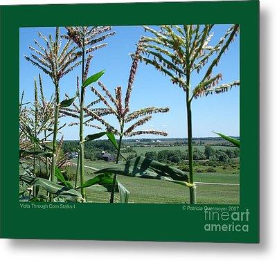 Vista Through Corn Stalks-i Metal Print