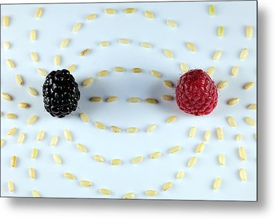 Vitalberry And Raspberry Depicting Magnetic Field Line Metal Print by Paul Ge