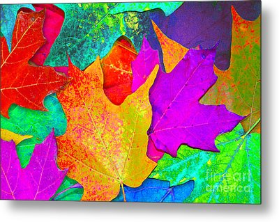 Metal Print featuring the photograph Vivid Leaves 1 by Ginny Gaura