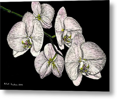 Wade's Orchids Metal Print by Robert Goudreau