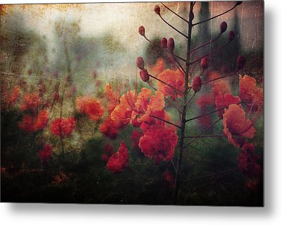 Waiting For Better Days Metal Print by Laurie Search