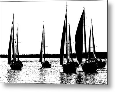 Waiting On The Wind Metal Print