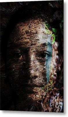 Waldgeist Metal Print by Christopher Gaston