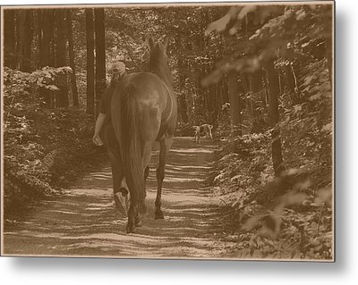 Metal Print featuring the photograph Walk Down Memory Lane by Davandra Cribbie