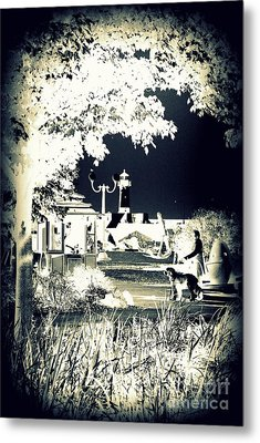Walk In The Park By The Sea Metal Print by Alex Blaha