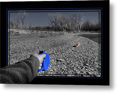 Metal Print featuring the photograph Walk Me by Brian Duram
