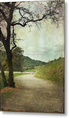 Walk Of Life Metal Print by Laurie Search