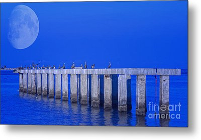 Walk To The Moon Metal Print by Gina Cormier