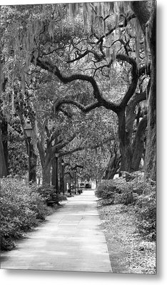 Walking Through The Park In Black And White Metal Print by Suzanne Gaff