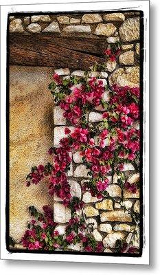 Wall Beauty Metal Print by Mauro Celotti
