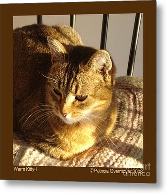 Warm Kitty-i Metal Print by Patricia Overmoyer