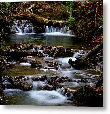 Metal Print featuring the photograph Warm Springs by Karen Harrison