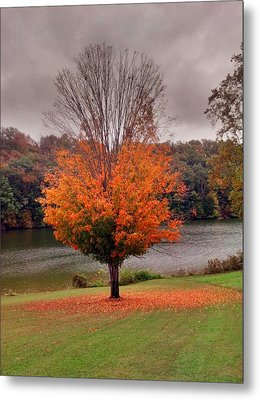 Metal Print featuring the photograph Warrior Path State Park by Janice Spivey