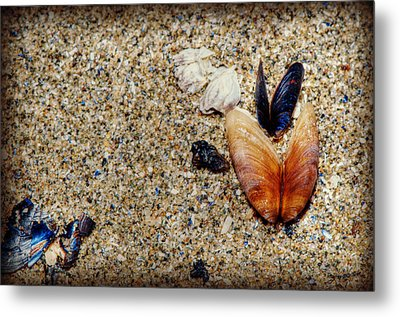 Washed Up Metal Print by Lisa Knechtel