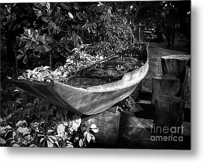 Metal Print featuring the photograph Water Canoe by Thanh Tran