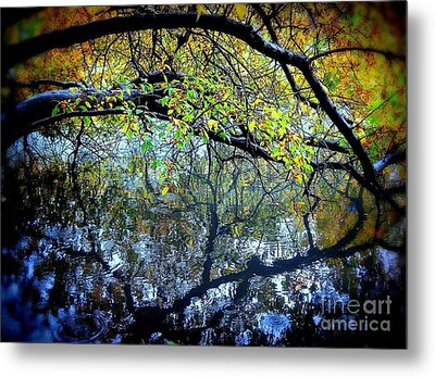 Water Cove Metal Print by Maria Scarfone