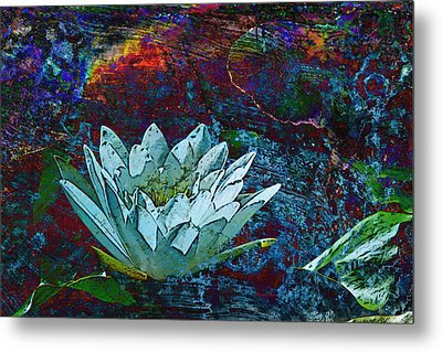 Water Lily Abstract Metal Print by Phyllis Denton