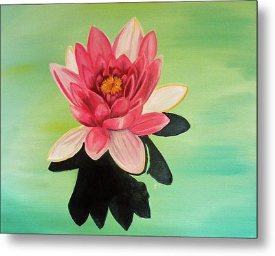 Water Lily Metal Print by Laura Evans