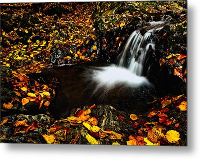 Waterfall Metal Print by Irinel Cirlanaru