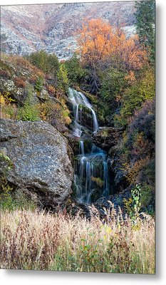 Metal Print featuring the photograph Waterfall Marion Creek by Gary Rose