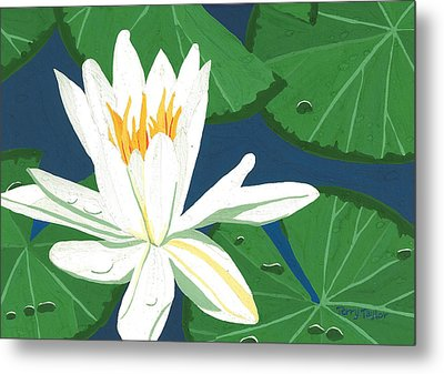 Metal Print featuring the painting Waterlily by Terry Taylor