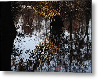 Metal Print featuring the photograph Waterpainting by Tamera James
