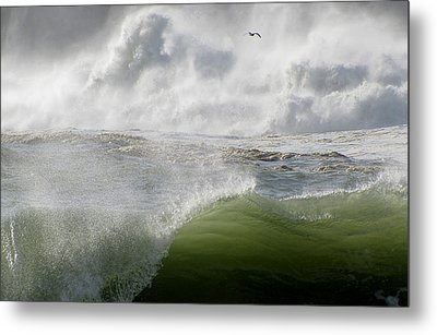 Metal Print featuring the photograph Wave by Barbara Walsh