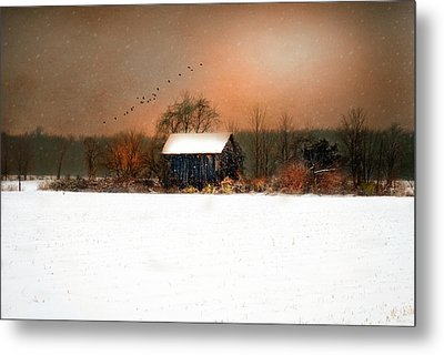 Metal Print featuring the photograph Weathered by Mary Timman