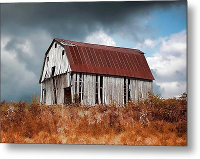 Metal Print featuring the photograph Weathering The Storm by Renee Hardison