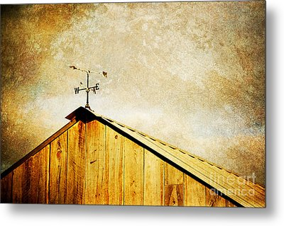 Weathervane Metal Print by Joan McCool
