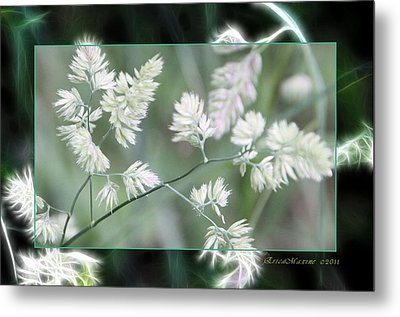 Metal Print featuring the photograph Weeds by EricaMaxine  Price
