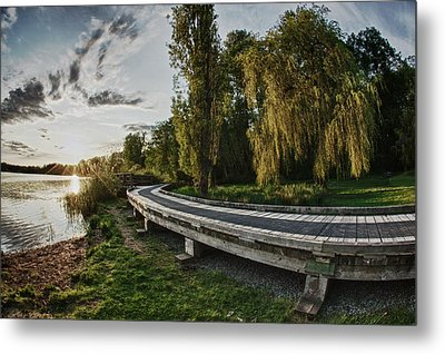 Metal Print featuring the photograph Weeping Willow Boardwalk by Scott Holmes